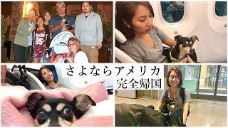 10年住んだアメリカを去る〜愛犬と飛行機で完全帰国