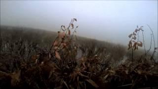 Супер охота на утку в Белоруссии