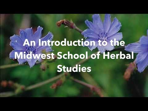 Midwest School of Herbal Studies (An Introduction)