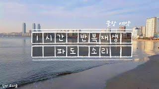 부산 바닷가 파도소리 1시간 재생 :) 광고없음! 딥수…
