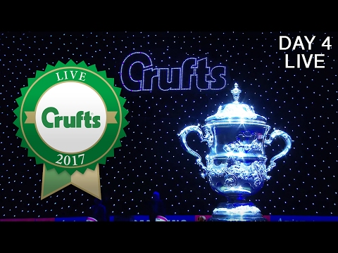 Day 4 Live | Crufts 2017