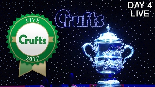 Day 4 Live   Crufts 2017 thumbnail