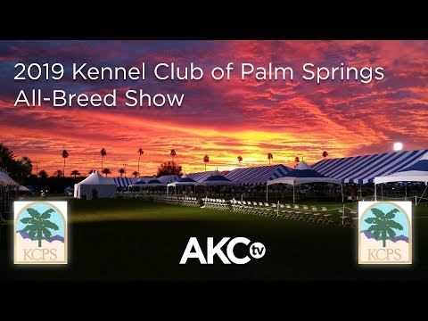 2019 Kennel Club Of Palm Springs All-Breed Show