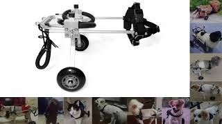 Dog Wheelchair Buying Guide 1  How to Correctly Measure Your Dog before Order