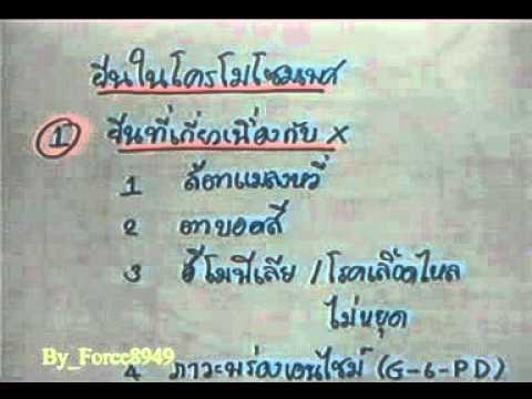 วิทยาศาสตร์ ม 3 การถ่ายทอดลักษณะพันธุกรรม สาธิต ม รามฯ Force8949 1 of 9