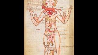 Дальневосточная Шамбала - Теория тонких тел - Эфирное тело