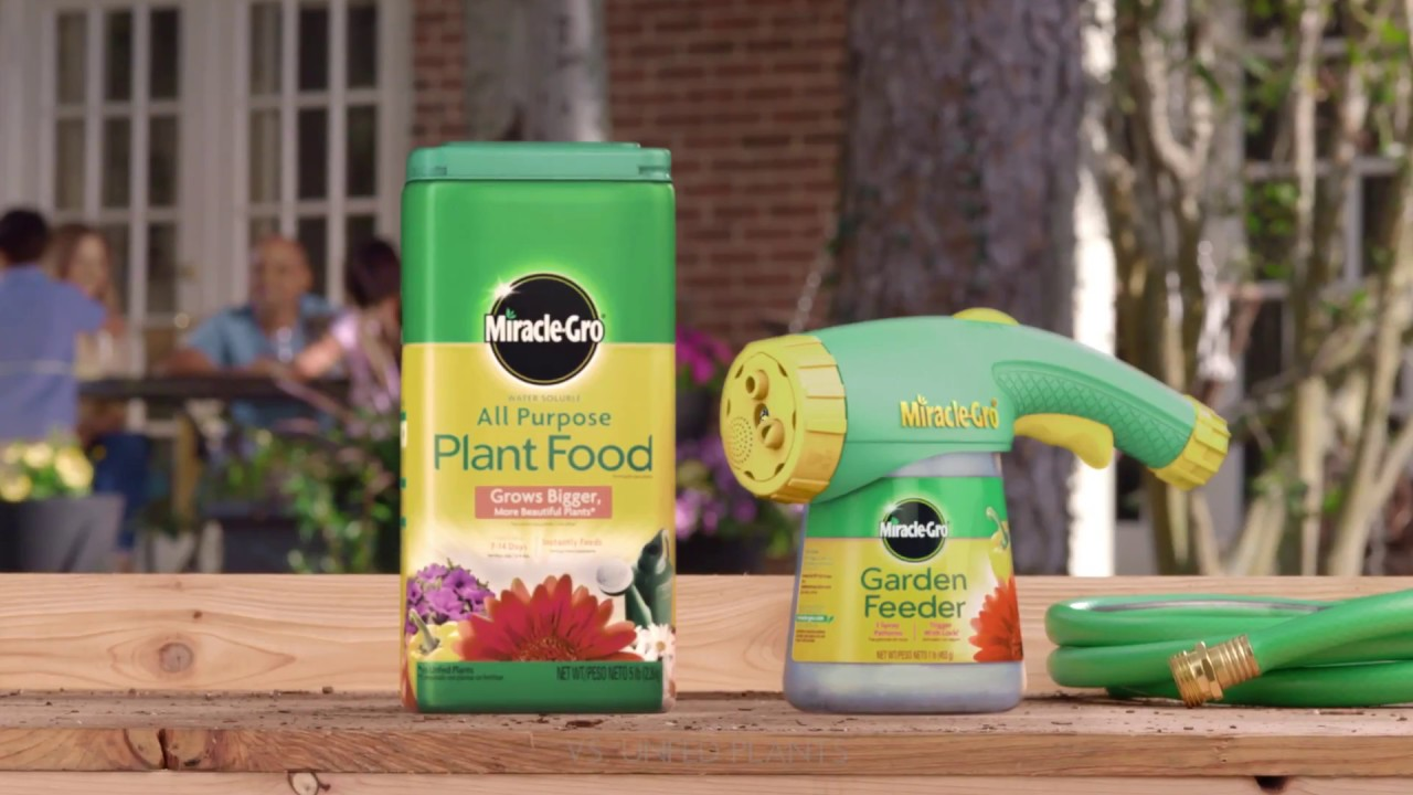 How To Use Miracle Gro All Purpose Water Soluble Plant Food