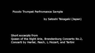 Piccolo Trumpet Demo(Bach, Hertel, Fasch, Tartini etc.), Satoshi Takagaki ピッコロトランペットデモ 高垣智