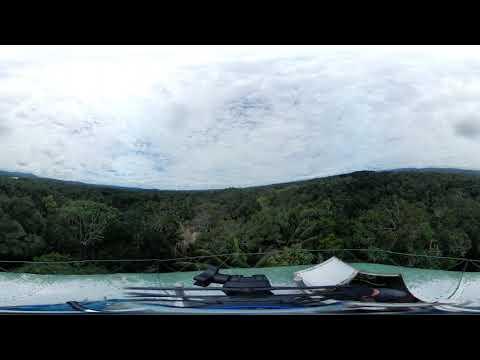 Phonography : Amazon Canopy - Ecuador (-1.076094, -77.612354)