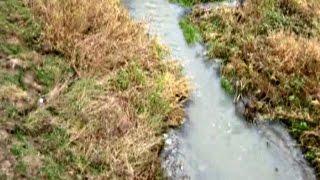 Річка Ислочь під загрозою забруднення! Панорама