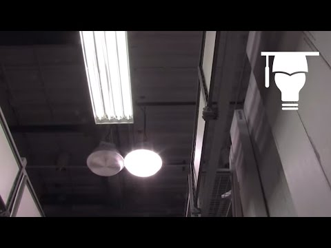 Learn the basics of a lighting Luminaire