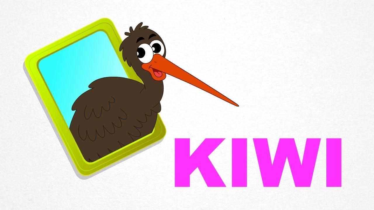 kiwi birds pre learn spelling videos for kids youtube