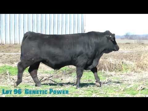 Lot 96  Genetic Power