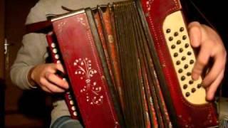 Lithuanian folk polka. Russian garmoshka.