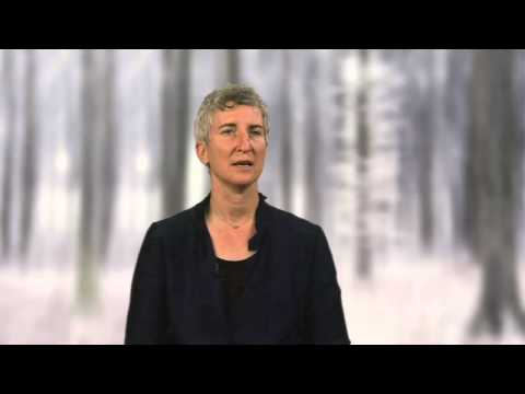 The interplay between the personal and the absolute - Tami Simon