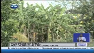 Ukambani dams project stall as residents grabble with water and