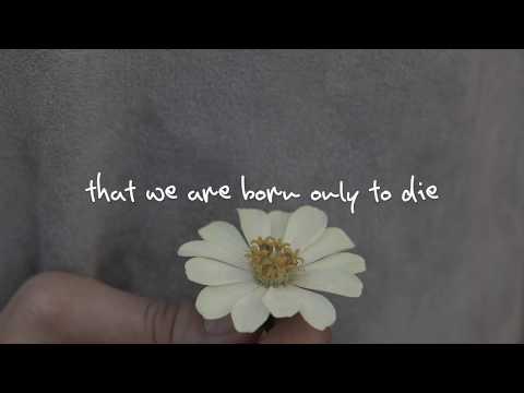 Kina Grannis Ft. Imaginary Future - I Will Spend My Whole Life Loving You (lyrics)