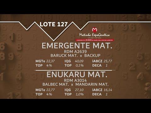 LOTE 127 MATINHA EXPOGENÉTICA 2021