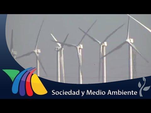 Se triplicaron los parques eólicos en Oaxaca | Noticias de Oaxaca