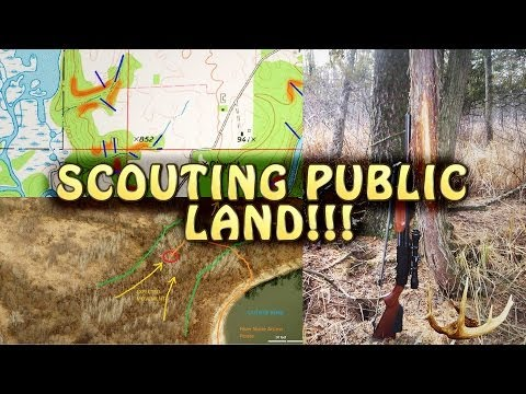 How to Scout Deer on Public Land