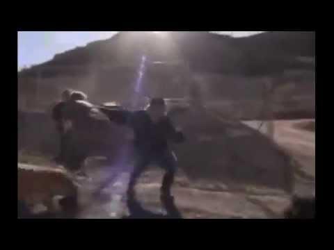 Pitbull saldırıları Pitbull attacks,