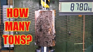 How Strong is a Log? Hydraulic Press Test!