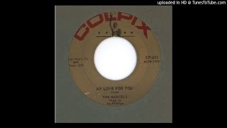 Marcels, The - My Love For You - 1961