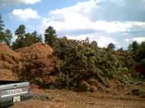 Mulch And Slash Piles Youtube