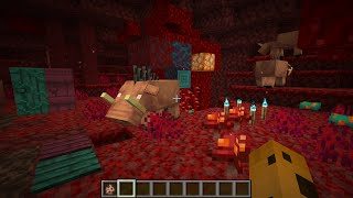 New Nether in Minecraft 1.16 Snapshot