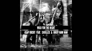A$AP Rocky Ft. Skrillex & Birdy Nam Nam - Wild For The Night (Bass Boosted)