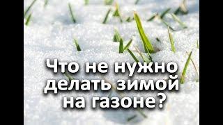Что не нужно делать зимой на газоне?