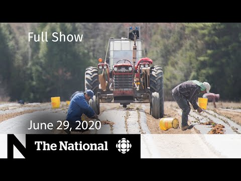 The National for Monday, June 29 — Outbreak among farm workers; Debating mandatory masks