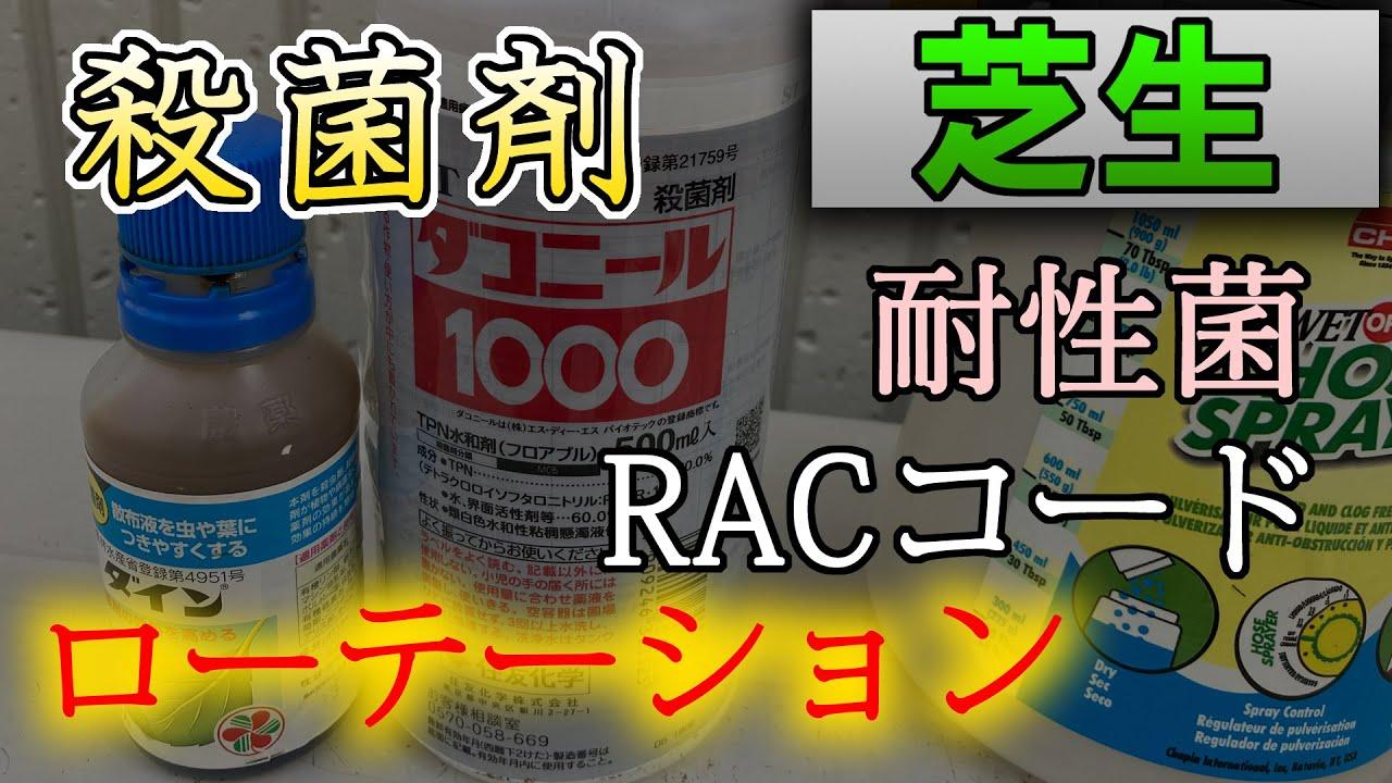 【芝生の病害予防】農薬ローテーション/RACコードとは【梅雨】