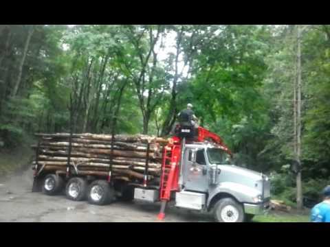 Chris Taylor Timber unloading