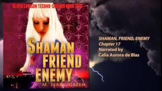 Shaman, Friend, Enemy - Chapter 17
