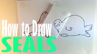 How to Draw Seals