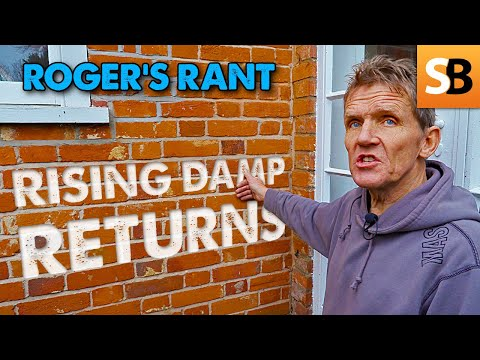 Rant - Rising Damp Strikes Again (or Does It?)