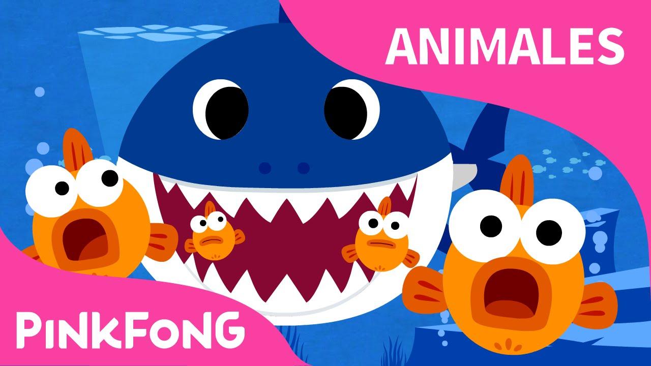 Tiburón Bebé | Animales | PINKFONG Canciones Infantiles - YouTube