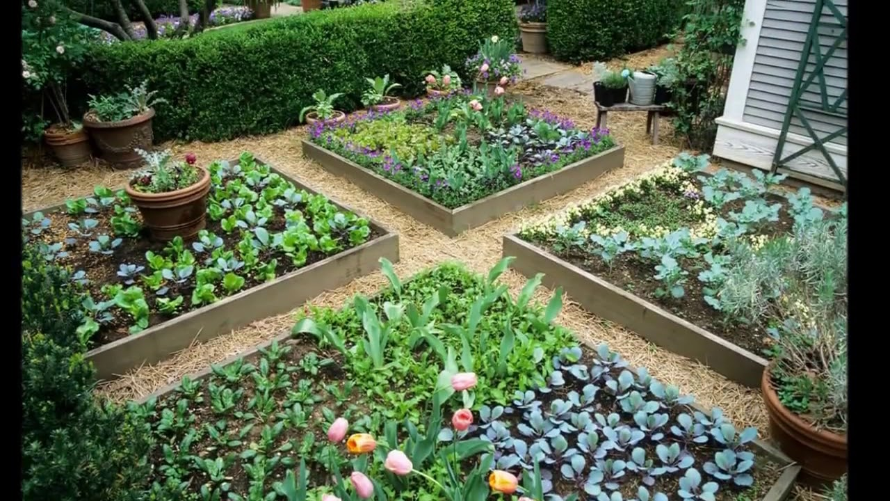 43 Front Yard Vegetable Garden Design Ideas - YouTube