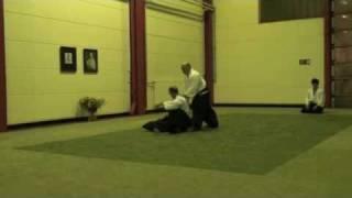 Teil 3: Lothar Darjes beim Aikido Enbukai Hamburg