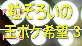 ボケMAX 第3回 粒ぞろいの玉ボケにしたい~3