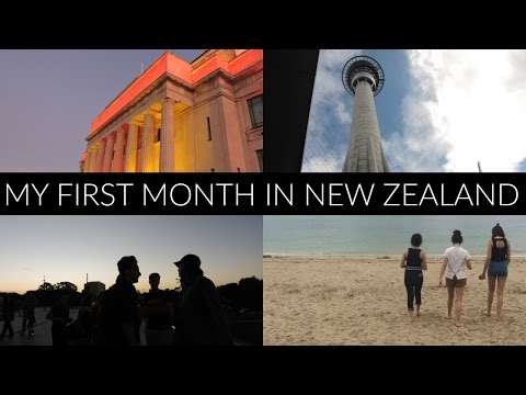 My First Month Living In New Zealand