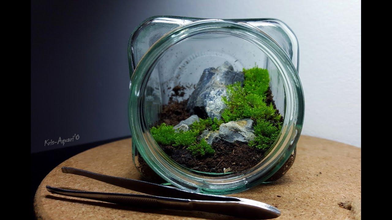 diy mini terrarium dans un petit bocal par kris aquari 39 o youtube. Black Bedroom Furniture Sets. Home Design Ideas