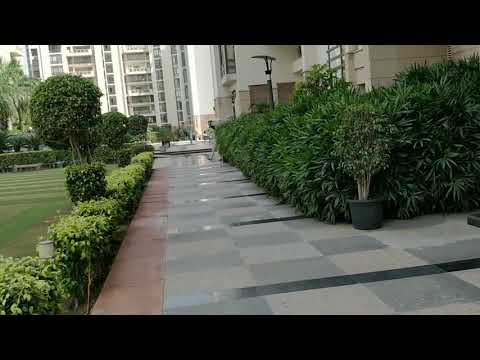 12000Sqft Triplex Penthouse at The Hibiscus Gurgaon #9650344336