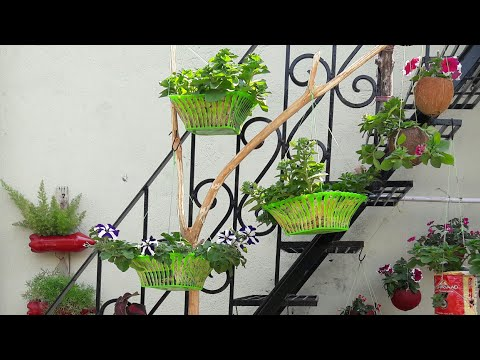   Super easy Hanging Buskets  How to make it   6.2.19