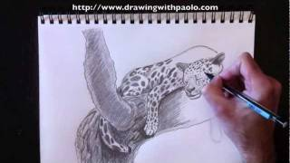 Drawing a Leopard with Paolo Morrone