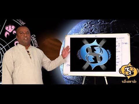 மீன ராசி 2019 ராகு கேது பெயர்ச்சி பலன்கள் | ஸ்ரீ ஜோதிட பீடம் | CELL ,9095111151 9043392111