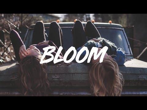 The Paper Kites | Bloom  (lyrics)