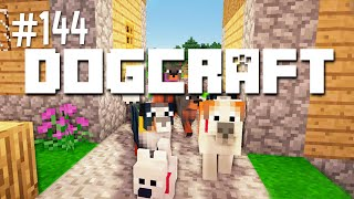 THE TRIAL RUN - DOGCRAFT (EP.144)