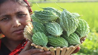 Farm Fresh Yummy Bitter Melon Fry with Potato Recipe Delicious Karela Vaji Curry Village Food